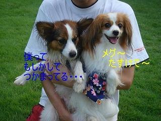 エルくん3.jpg